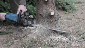 Il lavoratore ha tagliato un albero dalla motosega archivi video