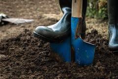 Il lavoratore scava il suolo nero con la pala nell'orto Fotografie Stock