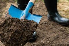Il lavoratore scava il suolo nero con la pala nell'orto Fotografia Stock