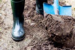 Il lavoratore scava il suolo nero con la pala nell'orto Fotografie Stock Libere da Diritti