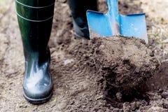 Il lavoratore scava il suolo nero con la pala nell'orto Fotografia Stock Libera da Diritti