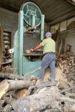 Il lavoratore taglia la legna da ardere con la sega a nastro fotografia stock