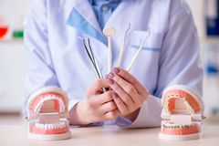 Il lavoro di pratica del dentista sul modello del dente Fotografie Stock Libere da Diritti