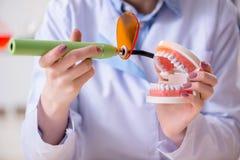 Il lavoro di pratica del dentista sul modello del dente Fotografia Stock
