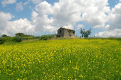 Il Lazio - Sabina - l'Italia Immagini Stock Libere da Diritti