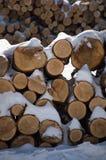 Il legname impilato della legna da ardere collega la neve Immagini Stock Libere da Diritti