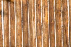 Il legno allinea il fondo di struttura Fotografia Stock Libera da Diritti