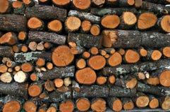 Il legno annota il mucchio Immagini Stock Libere da Diritti