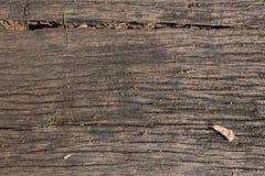 Il legno con è morto fondo di struttura della foglia fotografia stock