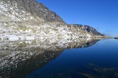 Il legno del parco di verde del cielo blu della natura della montagna si appanna il riflesso del lago piacevole Fotografia Stock Libera da Diritti