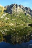 Il legno del parco di verde del cielo blu della natura della montagna si appanna il riflesso del lago piacevole Fotografia Stock