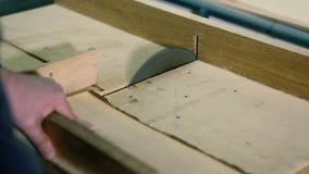 Il legno di taglio nel gruppo di lavoro del carpentiere con la Tabella circolare ha visto stock footage