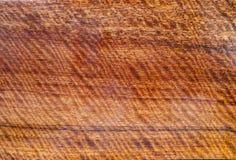 Il legno ha la banda della tigre o grano riccio della banda, bello modello esotico di legno per i mestieri immagini stock