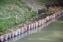 Il legno impedisce il cedimento del suolo immagine stock libera da diritti