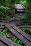 Il legno registra la via al ponte fotografia stock