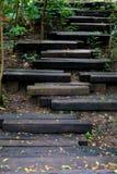 Il legno registra le scala alla cima della montagna immagini stock