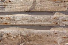 Il legno si imbarca sulla vecchia struttura dell'albero Fotografie Stock