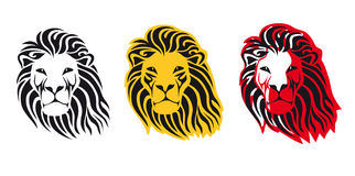 Il leone Immagine Stock Libera da Diritti