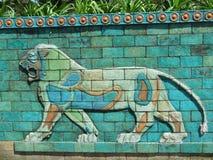 Il leone di colore Fotografia Stock