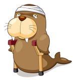 Il leone di mare del fumetto be è ferito Fotografie Stock
