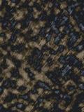 Il leopardo di legno bruciato dello scrittorio macchia lo sfondo naturale di struttura illustrazione di stock