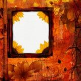 Il lerciume fiorisce la struttura Fotografia Stock