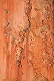 Il lerciume ha arrugginito metallo Immagini Stock