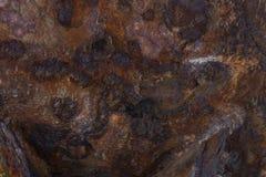 Il lerciume ha arrugginito struttura del metallo, ruggine e fondo ossidato del metallo immagine stock libera da diritti
