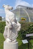 Il levriero bianco di Richmond, giardini di Kew, Londra, Regno Unito fotografia stock libera da diritti
