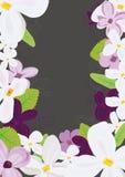 Il lillà fiorisce lo stile differente Immagine Stock