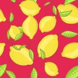 Il limone verde fruttifica con la foglia su luminoso rosso del ramo Fotografie Stock Libere da Diritti