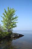 Il litorale. Fotografia Stock