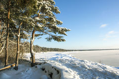 Il litorale del Mar Baltico Immagine Stock Libera da Diritti