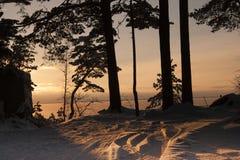 Il litorale del Mar Baltico Fotografie Stock Libere da Diritti