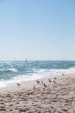 Il litorale del Mar Nero Immagini Stock