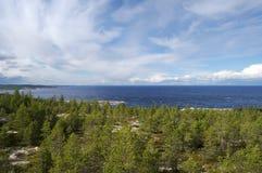 Il litorale del mare bianco coperto di conifero Fotografia Stock