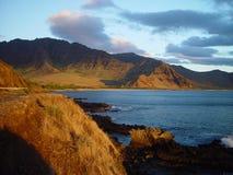 Il litorale hawaiano Immagine Stock