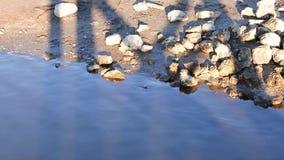Il litorale roccioso al parco roccioso del punto stock footage