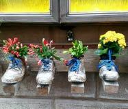 Il livello artistico di stanza frontale di negozio incontra la vegetazione in Toscana, Italia Fotografie Stock Libere da Diritti
