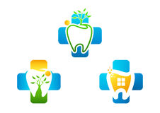 Il logo coltiva dentario sano Immagini Stock