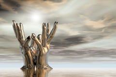 Il loto Mudra Fotografia Stock Libera da Diritti