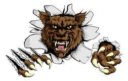 Il lupo arrabbiato mette in mostra la mascotte Immagini Stock