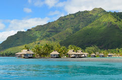 Il lusso ha ricoperto di paglia i bungalow di luna di miele del tetto in Polinesia francese Fotografie Stock