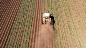 Il macchinario agricolo nel giacimento della patata coltiva la terra video d archivio
