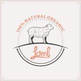 Il macellaio Shop Label Template, agnello taglia il diagramma Fotografia Stock Libera da Diritti