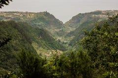 Il Madera verde Foresta tropicale nelle montagne sull'isola del Madera Immagini Stock
