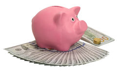 Il maiale di salvadanaio sta sul fan dei dollari e di un pacchetto con una moneta Immagini Stock