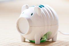 Il maiale giapponese gradisce il dispositivo dell'insetticida Immagine Stock Libera da Diritti