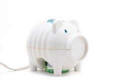 Il maiale giapponese gradisce il dispositivo elettrico dell'insetticida Fotografia Stock