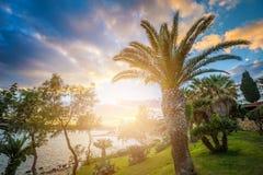 il, Malta - Piękna zmierzch scena przy Mellieha miasteczkiem z drzewkami palmowymi obrazy stock